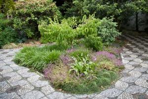 Plant-walk-graybox