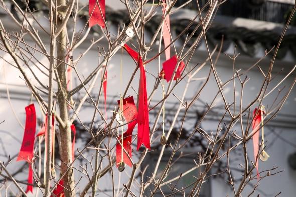 Feng-shui-wishing-tree-web