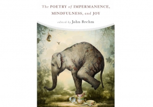 John Brehm - The Poetry of Impermanence, Mindfulness, and Joy (Wisdom Publishing 2017)