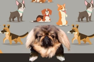 My Dog's Guide to Becoming a Great Human Being by DonnaJoy Taber